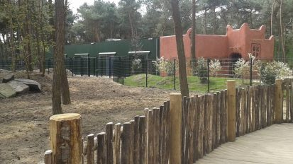 Okapi verblijf Beekse Bergen